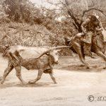 Pioneer Plaza Cattle Drive Bronze Statues