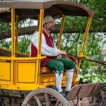 Colonial Williamsburg Coachman
