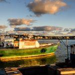 Fishing Boats St. John's Harbour